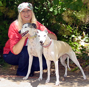 Pet Sitting Marin: Pet Sitter Lorna, Dog Walking Whippets Aly and Shasta